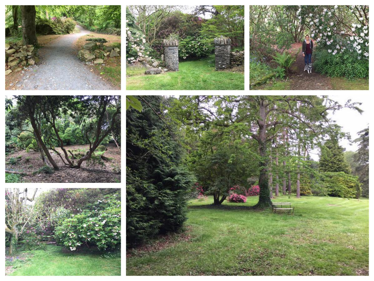 Rowallane Gardens woodland Areas - Pikalily Travel Blog